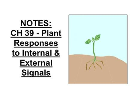 NOTES: CH 39 - Plant Responses to Internal & External Signals