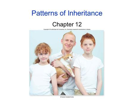 Patterns of Inheritance Chapter 12. 7 Early Ideas of Heredity Gregor Mendel -chose to study pea plants because: 1. other research showed that.