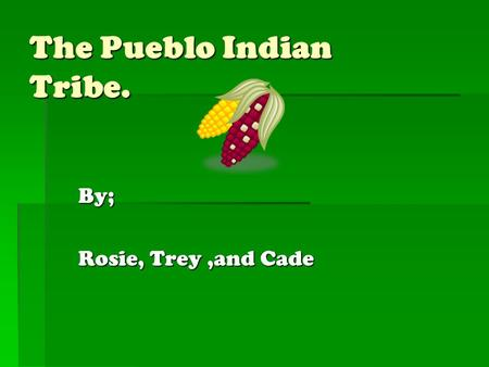 The Pueblo Indian Tribe. By; Rosie, Trey,and Cade.