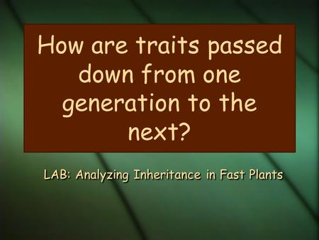 How are traits passed down from one generation to the next? LAB: Analyzing Inheritance in Fast Plants.