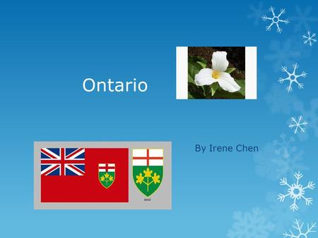 Ontario By Irene Chen Provincial Flag The provincial flag of Ontario.
