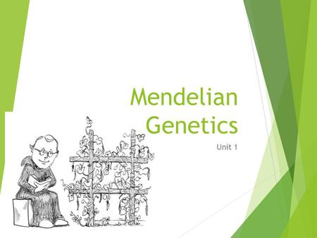 Mendelian Genetics Unit 1. Genetics  Science that deals with the structure & function of genes and their transmission from one generation to the next.