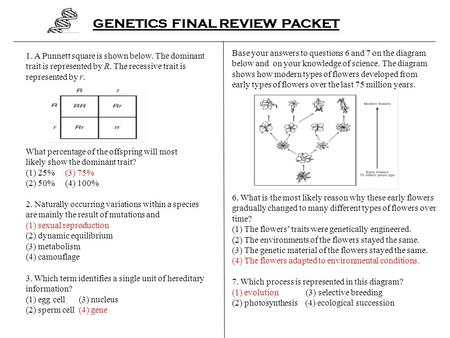 GENETICS FINAL REVIEW PACKET