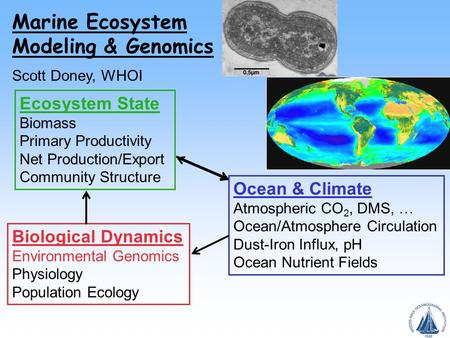 Ocean & Climate Atmospheric CO 2, DMS, … Ocean/Atmosphere Circulation Dust-Iron Influx, pH Ocean Nutrient Fields Ecosystem State Biomass Primary Productivity.