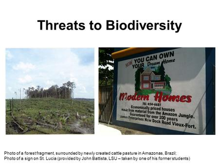 Threats to Biodiversity Photo of a forest fragment, surrounded by newly created cattle pasture in Amazonas, Brazil; Photo of a sign on St. Lucia (provided.