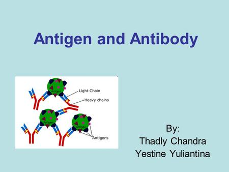 Antigen and Antibody By: Thadly Chandra Yestine Yuliantina.