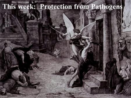 This week: Protection from Pathogens. esophagus stomach Taking in food and oxygen exposes us to pathogens.