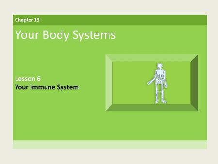 Chapter 13 Your Body Systems Lesson 6 Your Immune System.