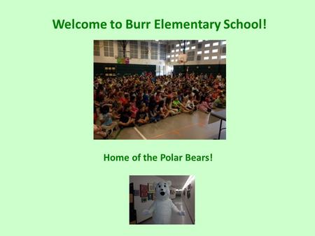Welcome to Burr Elementary School! Home of the Polar Bears!