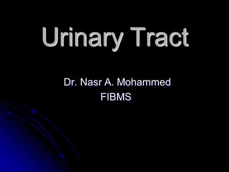 Urinary Tract Dr. Nasr A. Mohammed FIBMS.