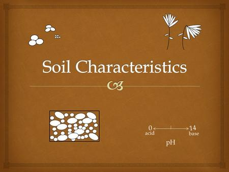 InteractiveScienceTeacher.com Pre-test How many soil characteristics are there? Name them all. Tell me 2 things about each.