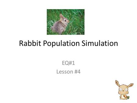 Rabbit Population Simulation