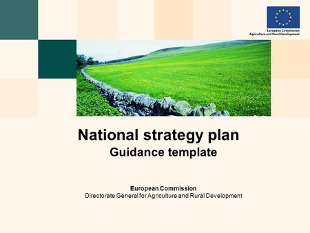 Guidance template European Commission Directorate General for Agriculture and Rural Development National strategy plan.