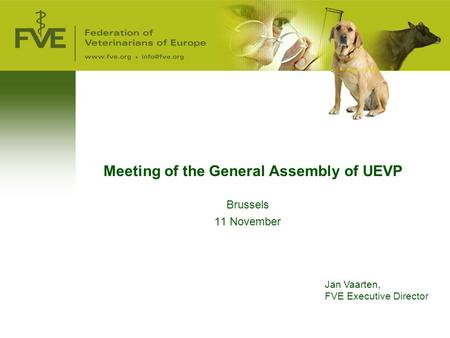 Meeting of the General Assembly of UEVP Brussels 11 November Jan Vaarten, FVE Executive Director.