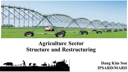 Agriculture Sector Structure and Restructuring Dang Kim Son IPSARD/MARD 1.