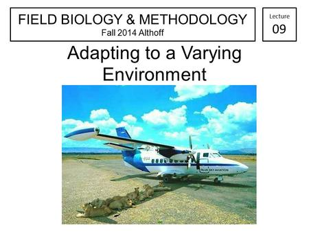 Adapting to a Varying Environment FIELD BIOLOGY & METHODOLOGY Fall 2014 Althoff Lecture 09.