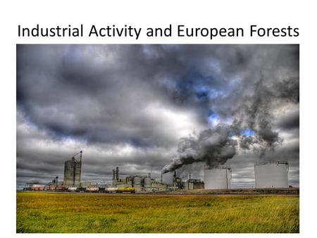 Industrial Activity and European Forests. Industrial activity is a primary cause of acid rain. The acid in acid rain comes from 2 types of air pollutants: