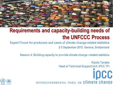 Task Force on National Greenhouse Gas Inventories Requirements and capacity-building needs of the UNFCCC Process Expert Forum for producers and users of.
