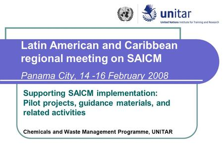 Latin American and Caribbean regional meeting on SAICM Panama City, 14 -16 February 2008 Supporting SAICM implementation: Pilot projects, guidance materials,