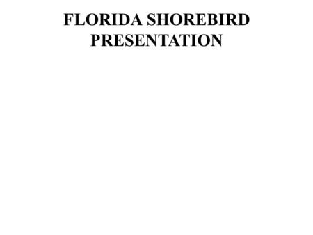FLORIDA SHOREBIRD PRESENTATION. 2/23/2009 Janell Brush - Florida Fish and Wildlife Conservation Commission.