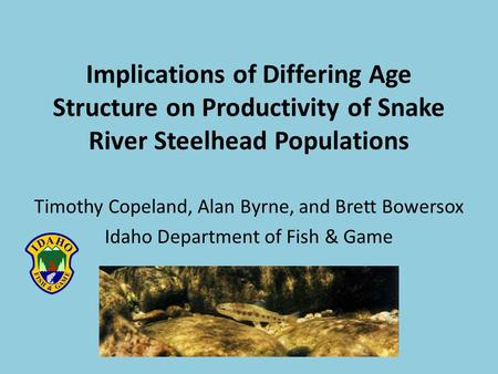 Implications of Differing Age Structure on Productivity of Snake River Steelhead Populations Timothy Copeland, Alan Byrne, and Brett Bowersox Idaho Department.