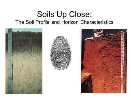 Soils Up Close: The Soil Profile and Horizon Characteristics.