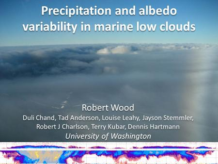 Precipitation and albedo variability in marine low clouds
