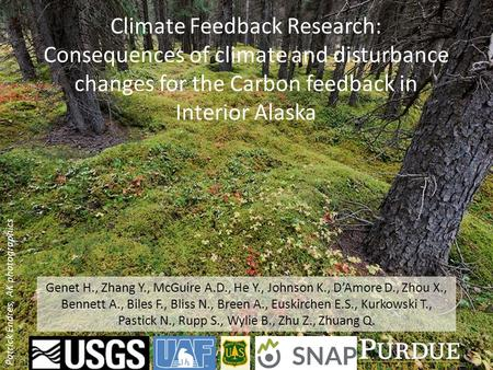 Climate Feedback Research: Consequences of climate and disturbance changes for the Carbon feedback in Interior Alaska Patrick Endres, AK photographics.