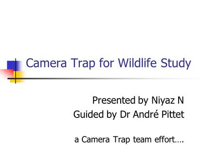 Camera Trap for Wildlife Study Presented by Niyaz N Guided by Dr André Pittet a Camera Trap team effort….