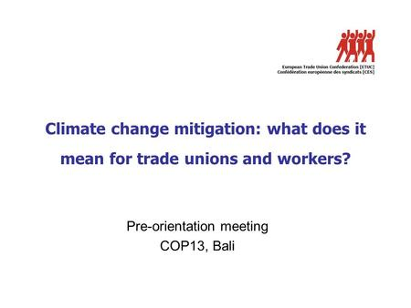 Climate change mitigation: what does it mean for trade unions and workers? Pre-orientation meeting COP13, Bali.