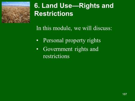 107 6. Land Use—Rights and Restrictions In this module, we will discuss: Personal property rights Government rights and restrictions.