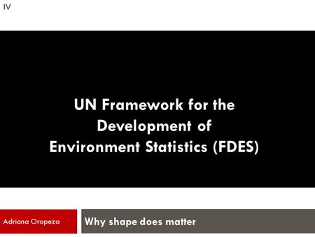 UN Framework for the Development of Environment Statistics (FDES) Why shape does matter Adriana Oropeza IV.