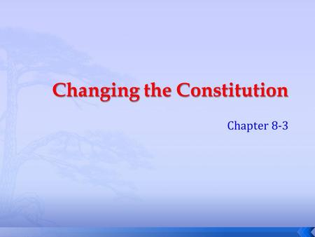 Chapter 8-3. Questions  What does the term mean to amend?  Why didn't the Continental Congress not include the rights of all people into the Constitution.