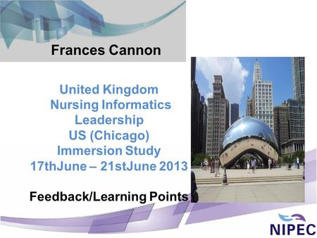 United Kingdom Nursing Informatics Leadership US (Chicago) Immersion Study 17thJune – 21stJune 2013 Feedback/Learning Points Frances Cannon.