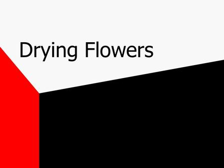 Drying Flowers. Dried Flowers Often sold to customers desiring a permanent arrangement.