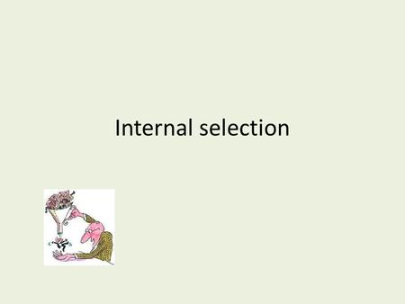 Internal selection. Introduction Internal selection refers to the assessment and evaluation of employees from within the organization as they move from.