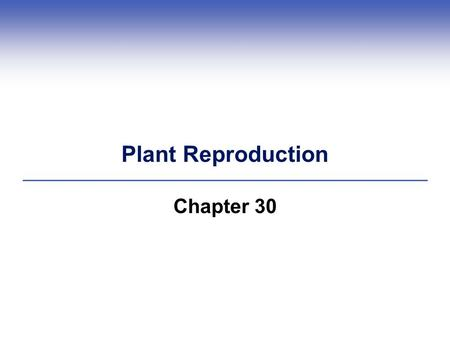 Plant Reproduction Chapter 30. Reproductive Structures of Flowering Plants  Flowers are the reproductive shoots of angiosperm sporophytes  Spores that.