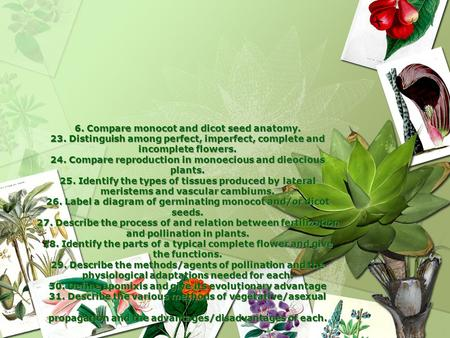 6. Compare monocot and dicot seed anatomy. 23