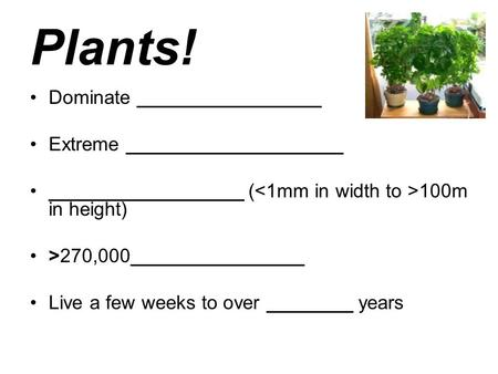 Plants! Dominate _________________ Extreme ____________________ __________________ ( 100m in height) >270,000________________ Live a few weeks to over.