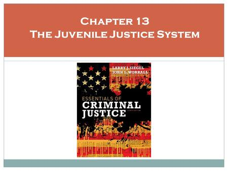 Chapter 13 The Juvenile Justice System