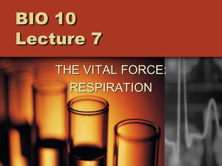 BIO 10 Lecture 7 THE VITAL FORCE: RESPIRATION. Respiration = the process by which living organisms harvest the energy in highly ordered, high energy molecules.