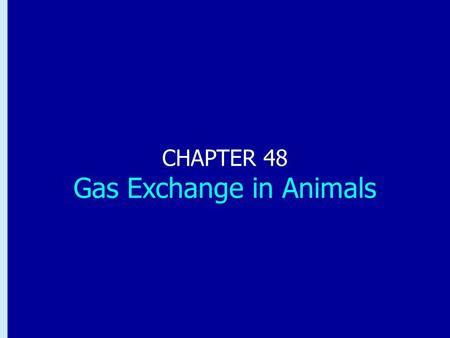 Chapter 48: Gas Exchange in Animals CHAPTER 48 Gas Exchange in Animals.