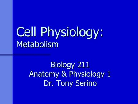 Cell Physiology: Metabolism Biology 211 Anatomy & Physiology 1 Dr. Tony Serino.