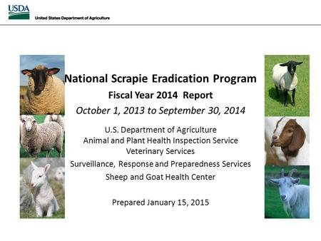 National Scrapie Eradication April 2014 Monthly Report National Scrapie Eradication Program Fiscal Year 2014 Report October 1, 2013 to September 30, 2014.