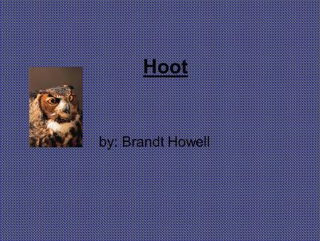 Hoot by: Brandt Howell.