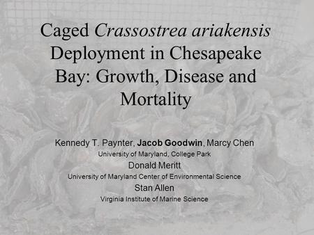 Caged Crassostrea ariakensis Deployment in Chesapeake Bay: Growth, Disease and Mortality Kennedy T. Paynter, Jacob Goodwin, Marcy Chen University of Maryland,