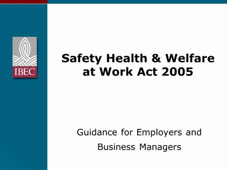 Safety Health & Welfare at Work Act 2005 Guidance for Employers and Business Managers.