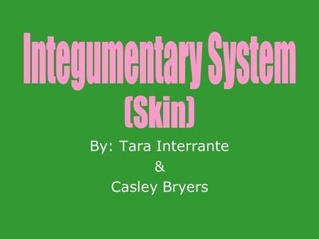 By: Tara Interrante & Casley Bryers. Protects the body from harmful environmental influences such as – mechanical damage, pathogenic organisms, etc. Sensation.