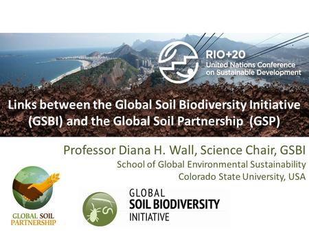 Links between the Global Soil Biodiversity Initiative (GSBI) and the Global Soil Partnership (GSP) Professor Diana H. Wall, Science Chair, GSBI School.
