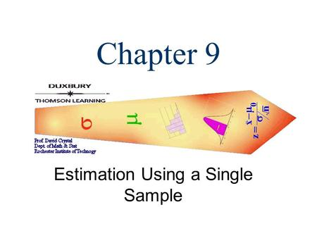 Estimation Using a Single Sample